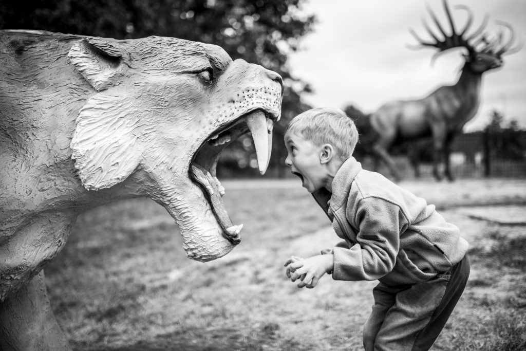 Child faced with sabre toothed tiger model showing courage in the face of challenge.