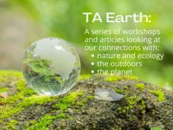 TA Earth pic for News Jan 2021